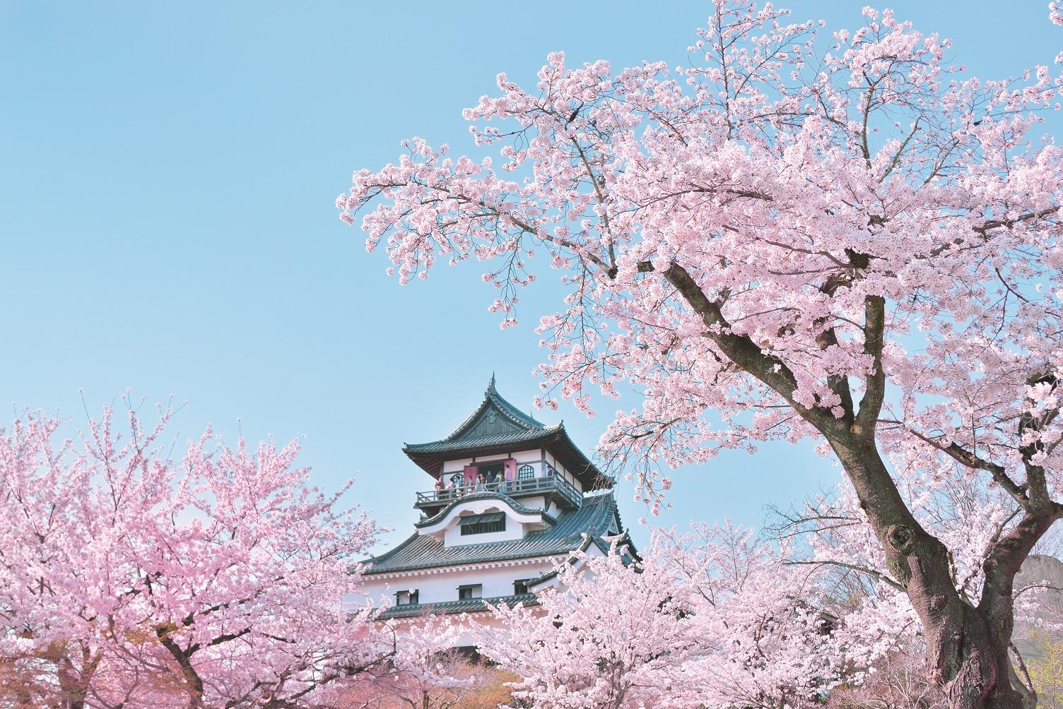 犬山城下町☆ミュースターポイントキャンペーン2021